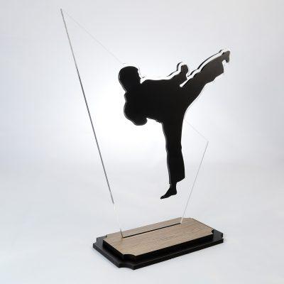 Troféu de Karate em Acrílico e Madeira Série Black Piano | Top Troféus