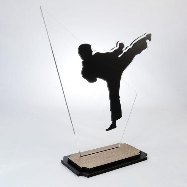 Troféu de Karate em Acrílico e Madeira Série Black Piano   Top Troféus
