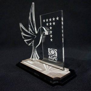 Prêmio Asa Branca – COR0008